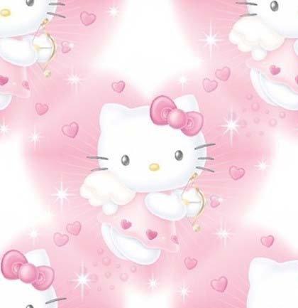 SANRIO HELLO KITTY Girl's Size 10 Hooded Fleece Nightshirt, Nightgown