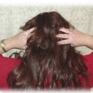 Make Your Own Shampoo Conditioner Hair Dyes Recipes eBook