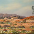 Original Oil Painting - South African Artist - Namaquland
