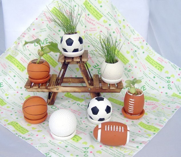 Football plants;Ceramic ball; Toy ball
