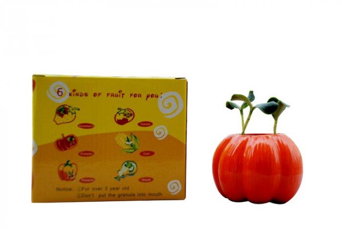 Halloween pumpkin;Pumpkin planter;Ceramic pumpkin