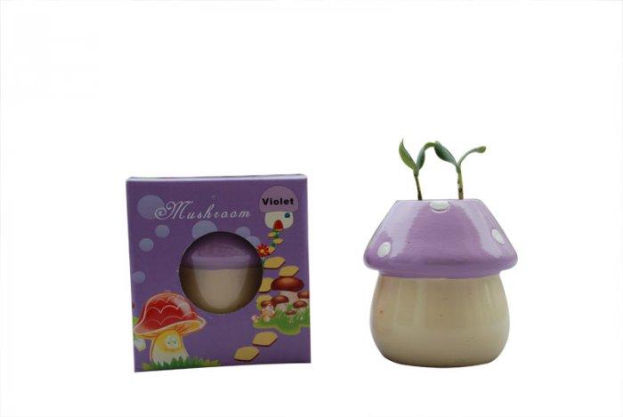 Mushroom plants; Mushroom gift;Ceramic Mushroom(purple)