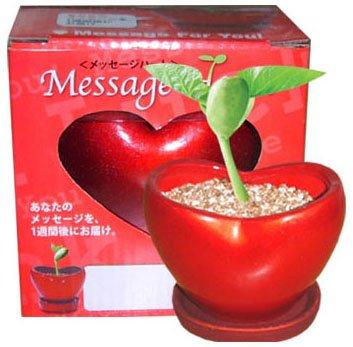 Heart-Shaped Garden Planters(GF-HPK)