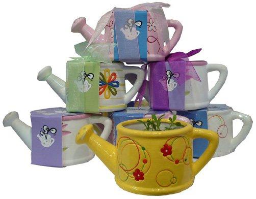 Garden gift;Terracotta bucket;lovely water can