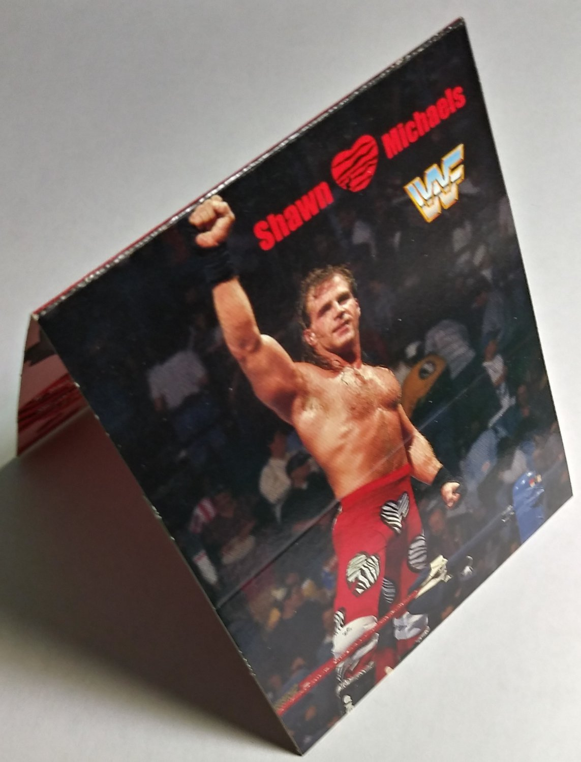 SHAWN EDWARDS WWF Real Action Pop-Up Card No. 1