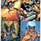 Marvel Adventures WOLVERINE Fleer Promo Trading Cards © 1995