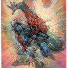 SPIDER-MAN Large Lenticular Trading Card © 1995
