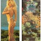 PAMELA ANDERSON Foil-Etched Edenquest Maxi-Card Promo Card © 1995