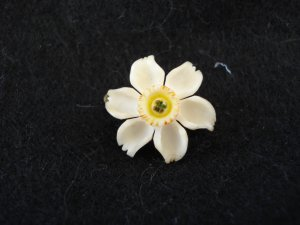 Tiny white jonquil pin plastic coral or bone old style clasp excellent vintage ll2762
