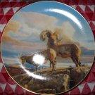 Desert Bighorn Nancy Glazier Knowles Collector Plate