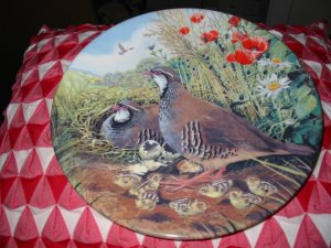 Red Legged Partridge By Derek Braithwaite Collector Plate Royal Grafton Very Pretty