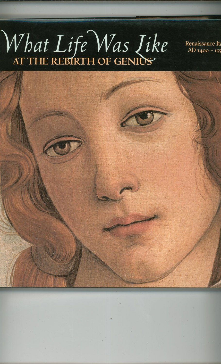 At The Rebirth Of Genius Renaissance Italy 0783554613 What Life Was Like