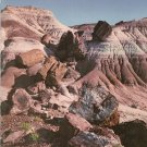 Petrified Forest The Story Behind The Scenery Vintage 1969