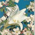 Vintage Easter Ideals Volume 31 Number 2 1974