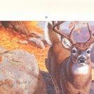 Remington  Advertising Calender  2003