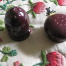 Red Wing Pottery Pair Salt & Pepper Shakers Iris Pattern Hand Painted Very Nice