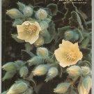 Vintage Audubon Magazine July 1973 Back Issue