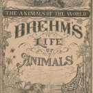 Vintage Brehm's Life Of Animals Part 6 A. N. Marquis Publishers Animals Of The World Not PDF