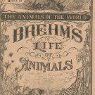 Vintage Brehm's Life Of Animals Part 22 A. N. Marquis Publishers Animals Of The World Not PDF
