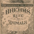 Vintage Brehm's Life Of Animals Part 21 A. N. Marquis Publishers Animals Of The World Not PDF