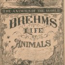 Vintage Brehm's Life Of Animals Part 14 A. N. Marquis Publishers Animals Of The World Not PDF