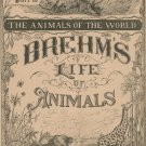 Vintage Brehm's Life Of Animals Part 12 A. N. Marquis Publishers Animals Of The World Not PDF