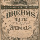Vintage Brehm's Life Of Animals Part 11 A. N. Marquis Publishers Animals Of The World Not PDF