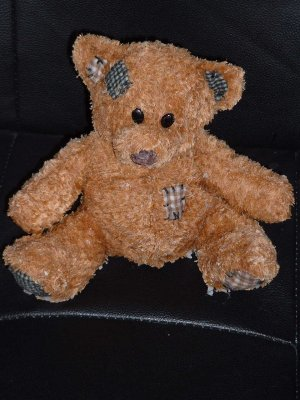 Scented Teddy