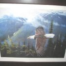 Ronnie Wells Silent Wings Eagle Poster Art Print Signed 89/500 Limited Edition