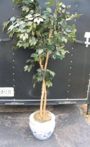 Artificial Tree Plant Chinese Porcelain Blue Vase Urn