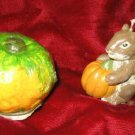 2 GANZ RUSS Harvest Squash Squirrel Candles Halloween