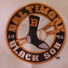 PNPA Baltimore Black Sox White Jersey 29 Negro Baseball 3XL 3X Big Tall Mens Clothing 918721