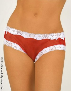 Lace trim mesh brief with ribbons (Very xmassy!)