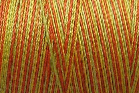 M8 Orange Kiwi Papaya 35wt  500m  Valdani Hand Dyed Variegated Cotton Thread q2