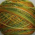 M28 Harvest Pearl Cotton size 8 Valdani Variegated q6