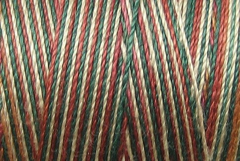 M29 Countryside 35 wt 500m  Valdani Hand Dyed Variegated Cotton Quilting Thread  q1