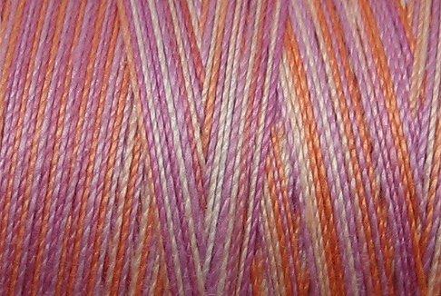 M39 - Precious Pansies - 35wt - 500m - Valdani Variegated Thread q1