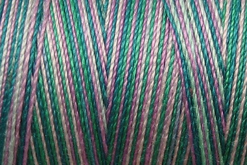 M21 Treasures  35 wt 500m  Valdani Hand Dyed Variegated Cotton Quilting Thread q1