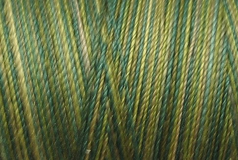 M19 Olives 35wt 2000m cone Valdani Hand Dyed Variegated Cotton Quilting Thread  x0