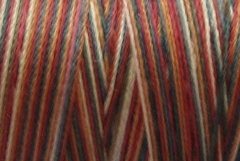 M70 The Nutcracker 50wt 1080 yds - Valdani Hand Dyed Cotton Variegated Thread q1