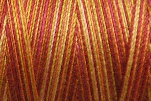 BONUS M37 Autumn 50wt 1625 yds - Valdani Hand Dyed Cotton Variegated Thread q1