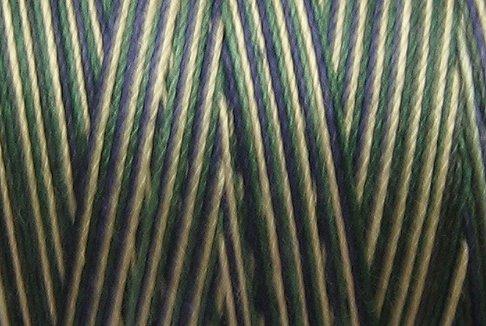 M4 Scottish Dance 50wt 1080 yds - Valdani Hand Dyed Cotton Variegated Thread q1