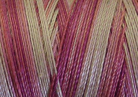 V107 Delicate Roses 50wt 1080 yds - Valdani Hand Dyed Cotton Variegated Thread q2