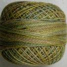 M80 Distant Grass Pearl Cotton size 12  Valdani Variegated q6