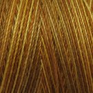 M81 B1 Backyard Honeycomb 35wt  500m  Valdani Variegated Thread q2