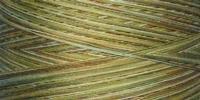 910 Bulrushes King Tut variegated thread 500yd spool q1
