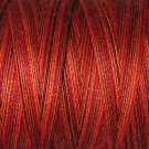 O533 Golden Autumn 35wt 500m Valdani Overdyed Thread 0533 q1