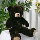 Coco Bear