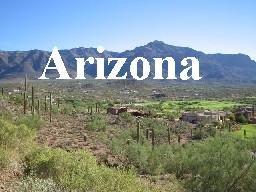 1/4 Acre Concho Lakeland, AZ, Apache County, $75 per month special!