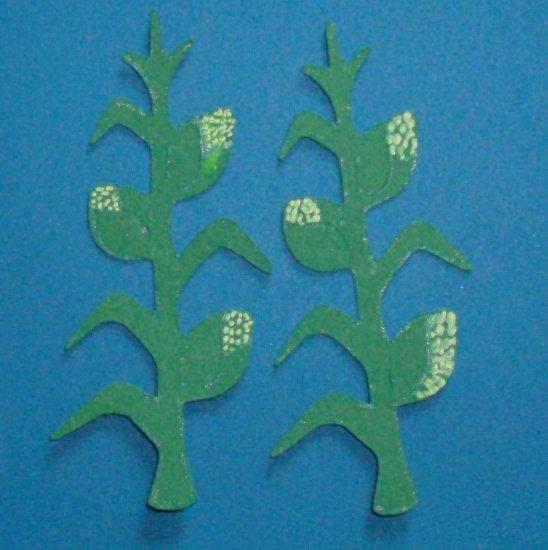"3"" Corn Stalks"